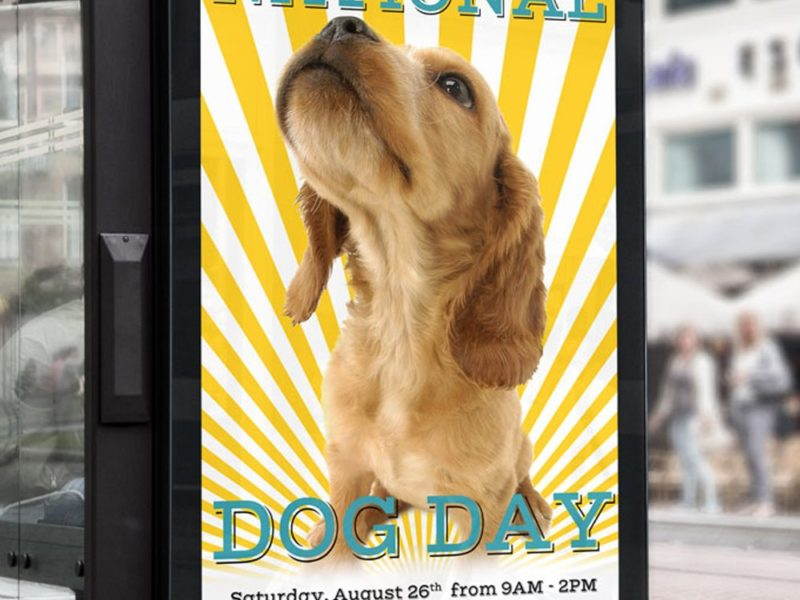 National Dog Day | Radcliffe & Co. Portfolio