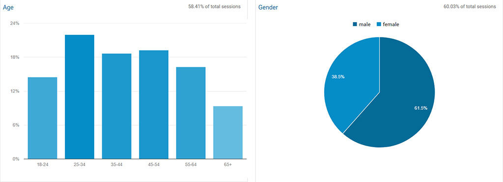 google analytics demographic overview